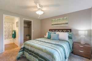 Two Bedroom Apartment for Rent in Lakewood, WA