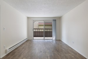 3 Bedroom Apartment for Rent in Lakewood, WA