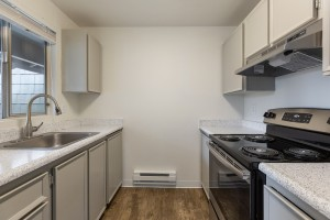 Three Bedroom Apartments in Lakewood, Washington for rent